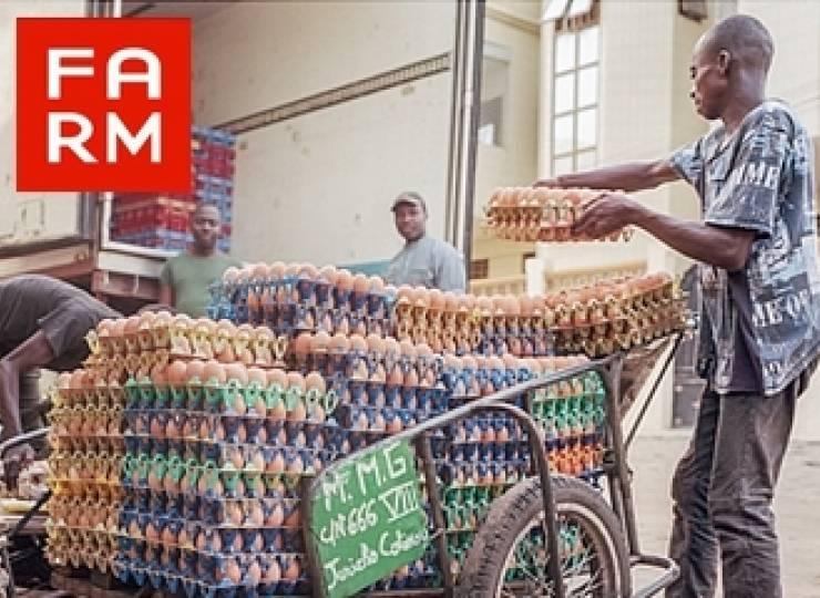 Farm Nourrir l'Afrique