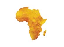 Démographie Afrique Investisseurs et Partenaires