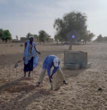 CDS Mauritanie Investisseurs et Partenaires