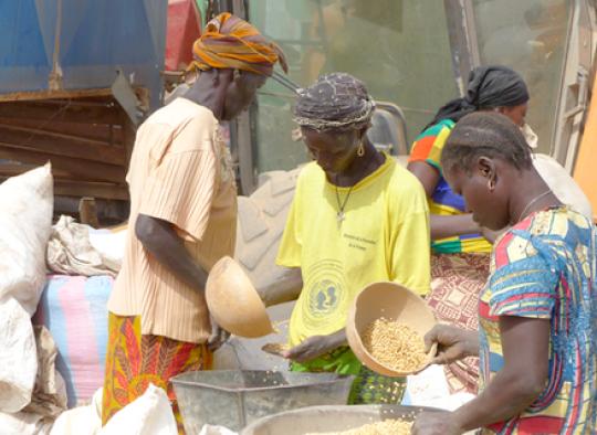 Siatol Sinergi Burkina Faso